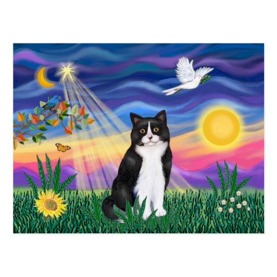 Black & White Cat - Twilight Postcard