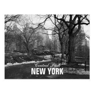 Black White Central Park New York Post Cards