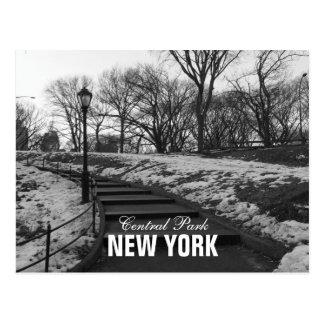 Black White Central Park New York Postcards