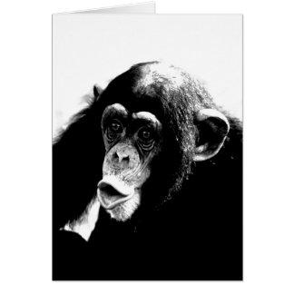 Black White Chimpanzee Card