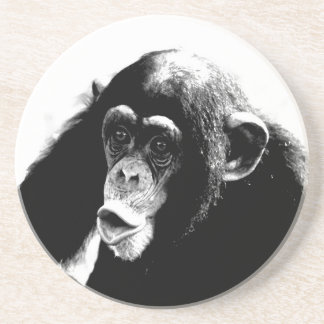Black White Chimpanzee Drink Coaster