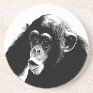 Black White Chimpanzee Drink Coaster