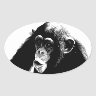 Black White Chimpanzee Oval Sticker