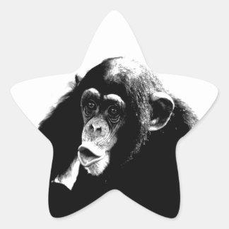Black White Chimpanzee Star Sticker