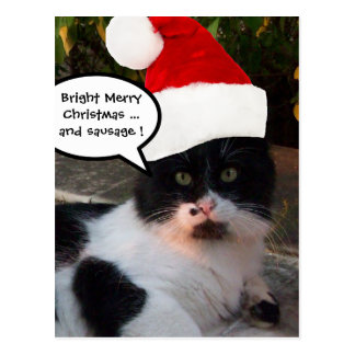 BLACK WHITE CHRISTMAS CAT WITH SANTA CLAUS HAT POSTCARD