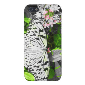 Black White & Color Butterfly iPhone 5/5S Case