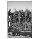 Black & White Corn Field Dry-Erase Board