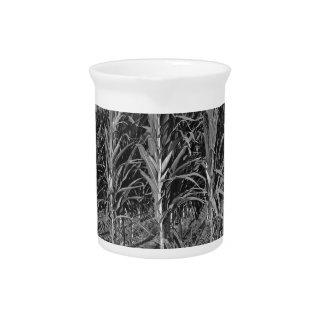 Black & White Corn Field Drink Pitcher