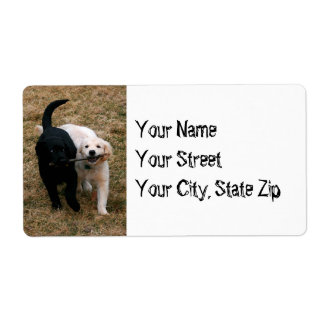 Black & white dogs with stick address label