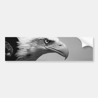 Black & White Eagle Eye Bumper Sticker