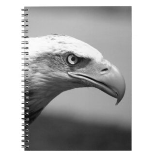 Black & White Eagle Eye Notebook