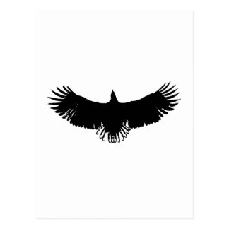 Black & White Eagle Silhouette Postcard