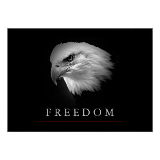Black White Freedom Eagle Face Poster