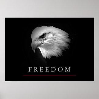 Black White Freedom Eagle Face Poster