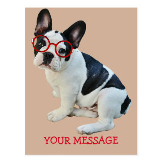 Black & White French Bulldog Wearing Red Glasses Postcard