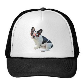 Black & White French Bulldog Wearing Red Glasses Trucker Hat