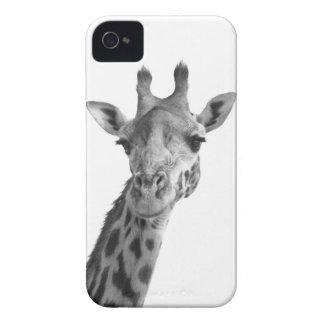Black White Giraffe iPhone 4 Case-Mate Case