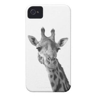 Black White Giraffe Blackberry Cases