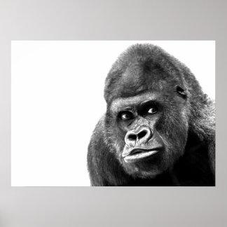 Black White Gorilla Poster