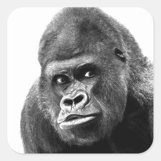 Black White Gorilla Square Sticker