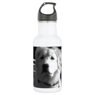 Black & White Great Pyrenees Stainless Steel Water Bottle