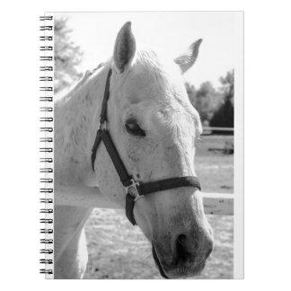 Black & White Grey Horse Spiral Notebook
