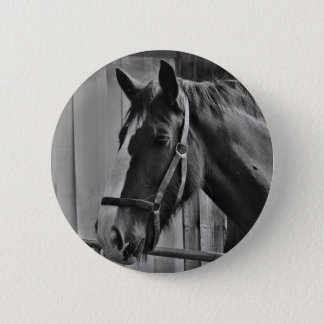 Black White Horse - Animal Photography Art Button