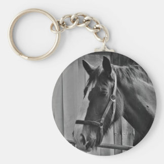Black White Horse - Animal Photography Art Keychain