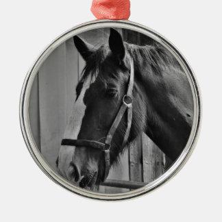 Black White Horse - Animal Photography Art Metal Ornament