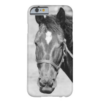Black White Horse Barely There iPhone 6 Case