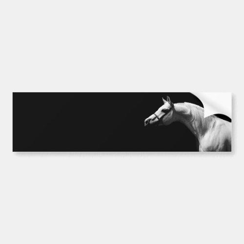 Black  White Horse Bumper Sticker