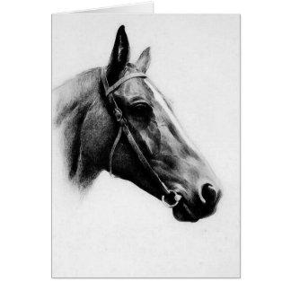 Black & White Horse Card