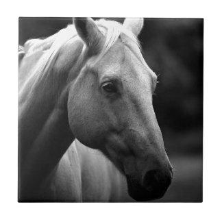 Black White Horse Ceramic Tile