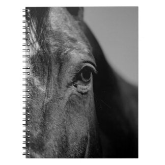 Black White Horse Eye Artwork Notebook