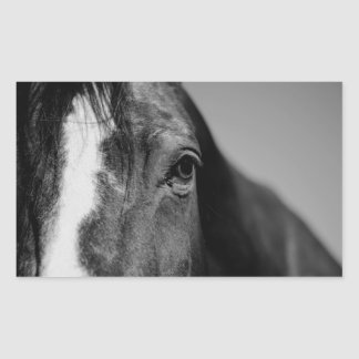 Black White Horse Eye Artwork Rectangular Sticker
