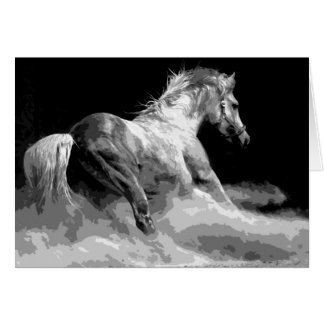 Black & White Horse in Action Card