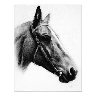 Black White Horse Invitations