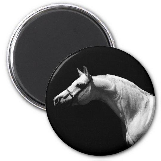 Black & White Horse Magnet