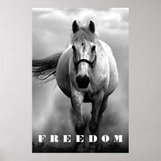 Black White Horse Motivational Freedom Artwork Poster