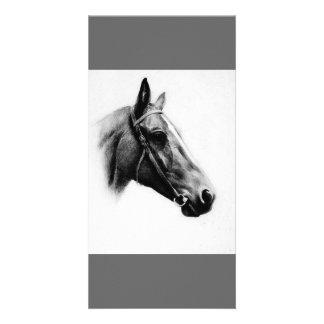 Black White Horse Custom Photo Card