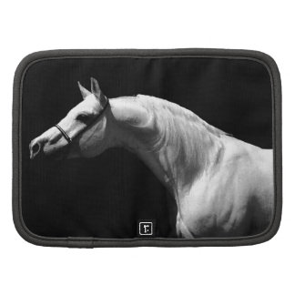 Black & White Horse Planners