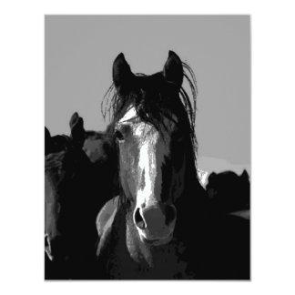 Black & White Horse Portrait Card