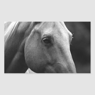 Black White Horse Rectangular Sticker
