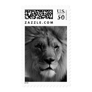 Black & White King Lion Pride Postage