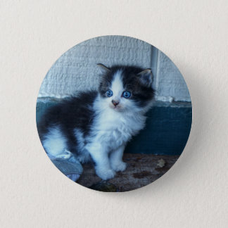 Black + White Kitten Pinback Button