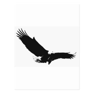 Black & White Landing Eagle Postcard