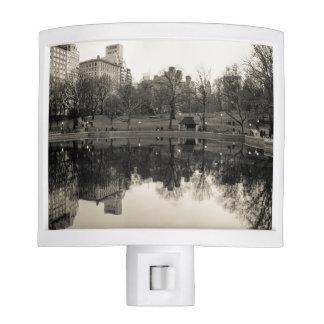 Black & White Landscape in Central Park Night Light
