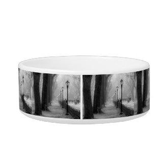 Black & White Landscape in Central Park Pet Bowl