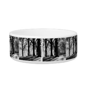 Black & White Landscape in Central Park Cat Water Bowls