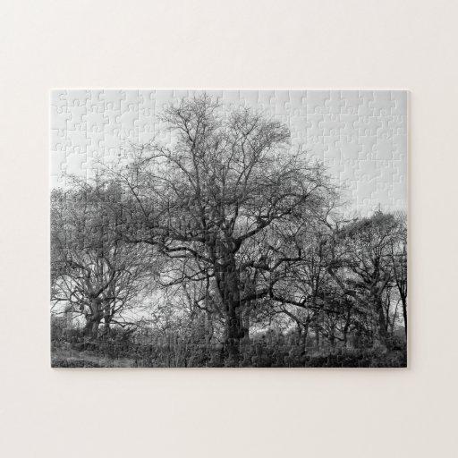 Black & White Landscape Winter Tree in Central Par Jigsaw Puzzles